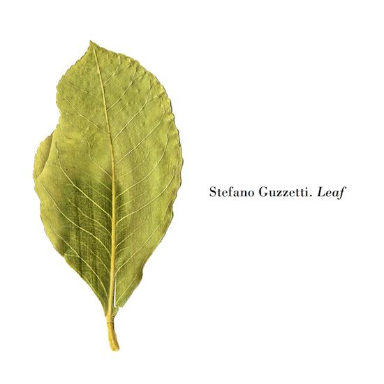 Leaf (jap).jpg